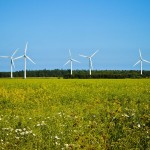 wind turbine mills at the edge of a summer field